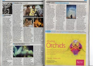 Guardian Preview